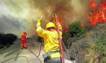 Verdemar Ecologistas en Acción anima a los ciudadanos a colaborar en la prevención y participación de los incendios forestales.