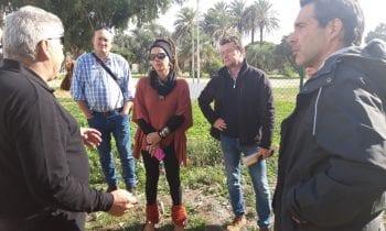 Raquel Ñeco supervisa los trabajos de detección de plagas desarrollados por Grupo Raga en el drago del parque Princesa Sofía