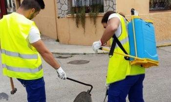 Salud inicia la campaña anual de choque contra insectos y roedores