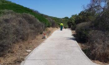 Parques y Jardines ejecuta trabajos de siembra, siega e instalación de nuevos sistemas de riego en distintos puntos de la ciudad.