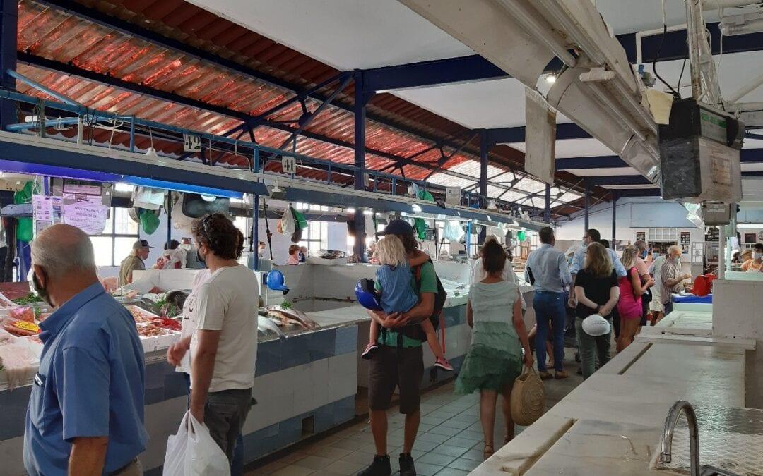 El domingo se llevarán a cabo trabajos de desratización y de desinsectación en el Mercado de La Concepción y en el de Los Junquillos