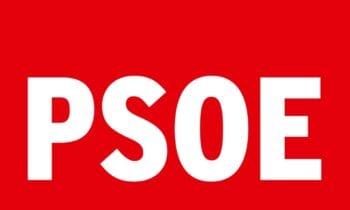 PSOE ve nefasta la gestión del Gobierno Linense 100×100.